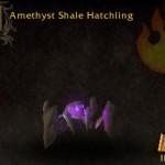 Amethyst Shale Hatchling