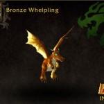Bronze Whelpling
