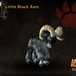 Little Black Ram