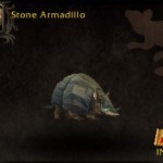 Stone Armadillo