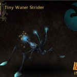 Tiny Water Strider